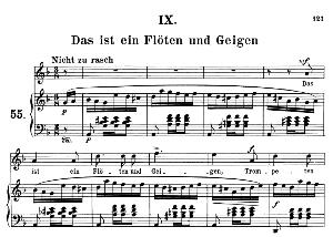 das ist ein flöten und geigen op.48 no.9, medium voice in d minor (original key), r. schumann (dichterliebe), c.f. peters