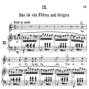 Das ist ein Flöten und Geigen Op.48 No.9, Medium Voice in D minor (Original Key), R. Schumann (Dichterliebe), C.F. Peters | eBooks | Sheet Music