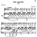 Dein Angesicht Op.127 No.2, Medium Voice in D Flat Major, R. Schumann, C.F. Peters   eBooks   Sheet Music
