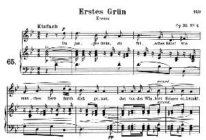Erstes Grün Op. 35 No.4, Medium Voice in G minor, R. Schumann, C.F. Peters | eBooks | Sheet Music