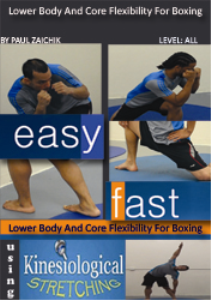boxing lower body
