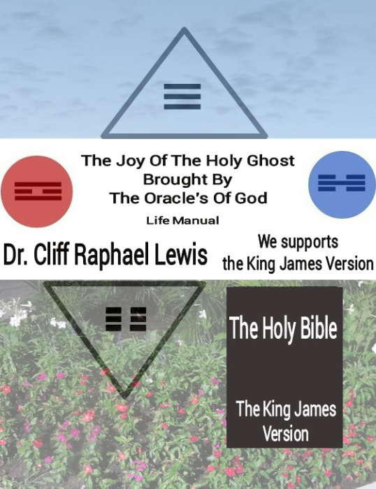 First Additional product image for - The Joy Of The Holy Ghost Brought By The Oracle's Of God