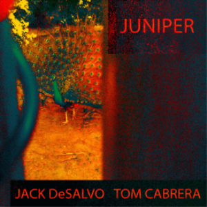 juniper - jack desalvo & tom cabrera (flac cd quality)