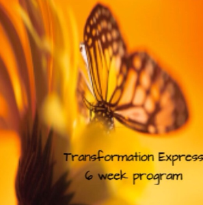 6 week transformation express