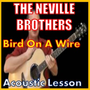 learn to play bird on a wire by the neville brothers