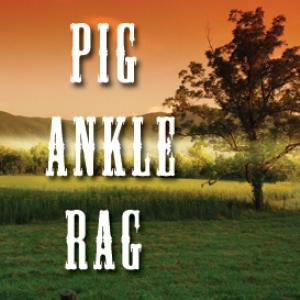 pig ankle rag full tempo backing track