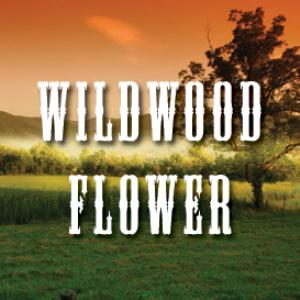wildwood flower full tempo backing track