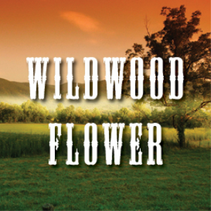 Wildwood Flower Multi Tempo Backing Tracks   Music   Backing tracks