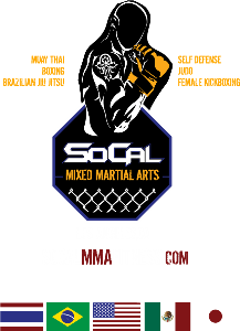 socal bjj white belt requirements