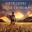 Siete Leyes De La Cosecha   Audio Books   Religion and Spirituality