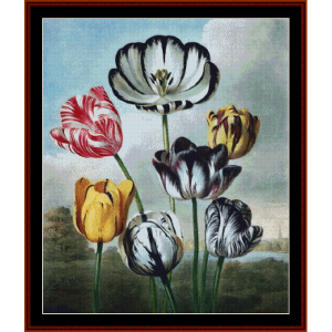 Tulip - Floral cross stitch pattern by Cross Stitch Collectibles | Crafting | Cross-Stitch | Wall Hangings