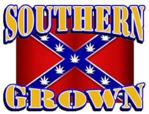 southern grown marijuana