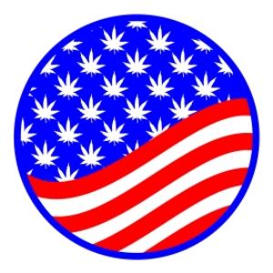 red, white, and blue marijuana leaf circle