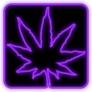 neon purple mrijuana leaf square