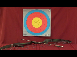 sample archery video