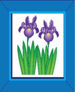 purple iris flowers in a blue frame