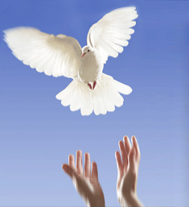 2015 year of  release, restoration and revelation