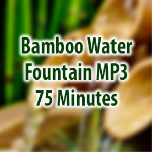 bamboo water fountain (75 minutes)