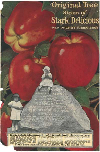 stark bros. nursery catalog, 1925