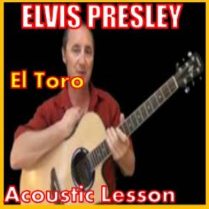 learn to play el toro by elvis presley