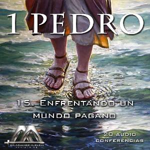 15 Enfrentando un mundo pagano   Audio Books   Religion and Spirituality