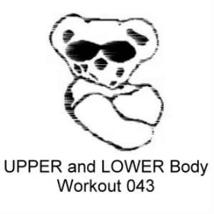 upper and lower body workout 043
