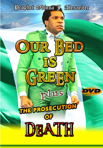 exclusive! our bed is green