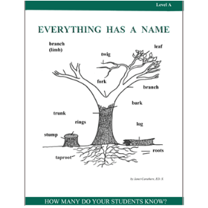 everything has a name - level a activity pack