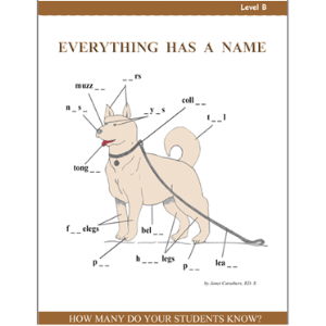 the illustrated dictionary activity book