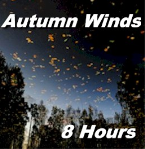 autumn wind sounds - 8 hour