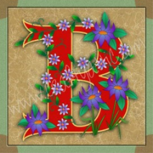 illuminated letter b embroiderers background