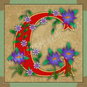 illuminated letter b embroiderers backgrounc