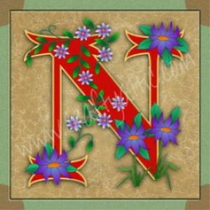 illuminated letter n embroiderers background