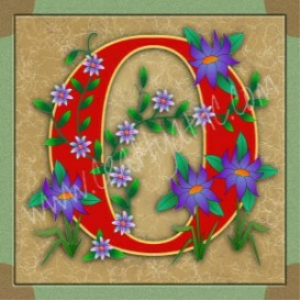 illuminated letter o embroiderers background