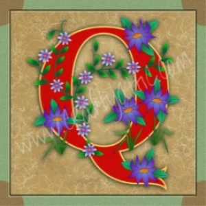 illuminated letter q embroiderers background