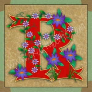 illuminated letter r embroiderers background