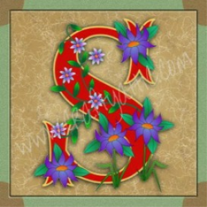illuminated letter s embroiderers background