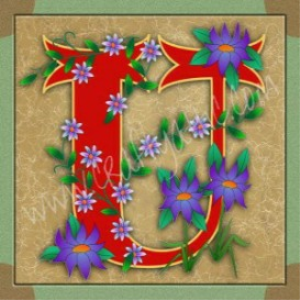 illuminated letter u embroiderers background