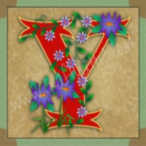 illuminated letter y embroiderers background