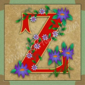 illuminated letter z embroiderers background