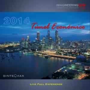 tunel economico 2014