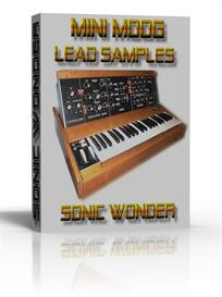 mini moog leads  multi samples   -  wave -