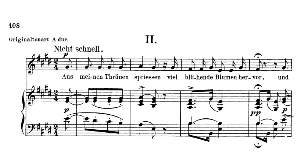 aus meinen tränen spriessen op.48 no.2, low voice in e major,  r. schumann (dichterliebe). c.f. peters.