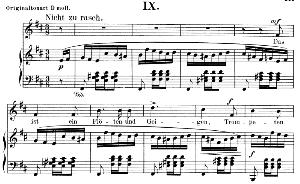 das ist ein flöten und geigen op.48 no.9, low voice in b minor,  r. schumann (dichterliebe). c.f. peters.