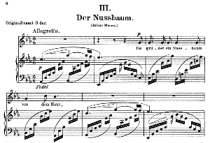der nussbaum op.25 no.3, low voice in e flat major,  r. schumann (myrten). c.f. peters.