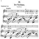 Der Nussbaum Op.25 No.3, Low Voice in E Flat Major,  R. Schumann (Myrten). C.F. Peters. | eBooks | Sheet Music