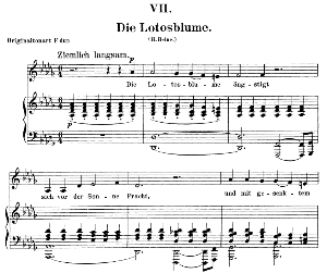 die lotosblume op. 25 no. 7, low voice in d flat major,  r. schumann (myrten).  c.f. peters.