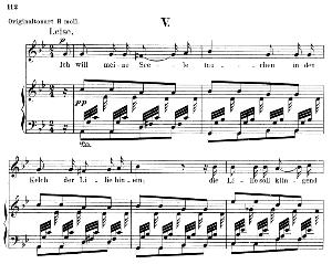 ich will meine seele tauchen op. 48 no.5, low voice in g minor, r. schumann (dichterliebe).  c.f. peters.