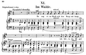 im walde op.39 no.11, low voice in g major, r. schumann (liederkreis). c.f. peters.