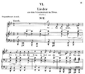 lied ii aus dem schenkenbuch op. 25 no.5, low voice in g minor, r. schumann (myrten). c.f. peters.
